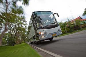 Rental Bus Pariwisata Bali
