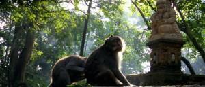 Objek Wisata Ubud