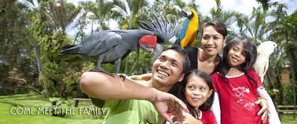 Taman Burung Bali