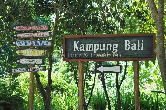Bali Safari Marine Park All