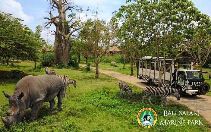 Bali Safari Marine Park - Tempat Wisata Favorit