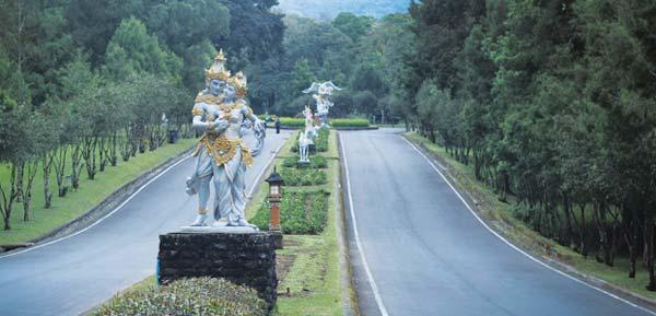 Bedugul Kebun Raya Bali