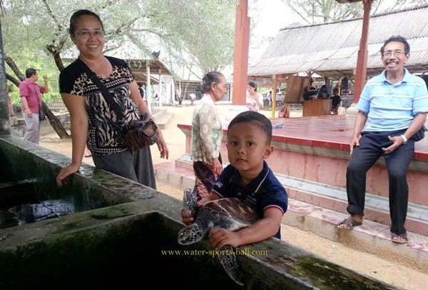 Paket Wisata Pulau Penyu Bali