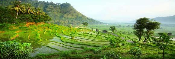 Daftar Harga Tiket Masuk Wisata Di Bali