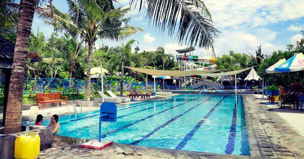 Lap Pool Circus Water Park