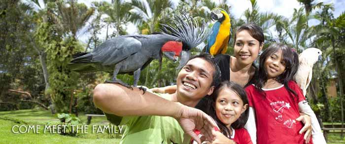 Ubud Bird Park