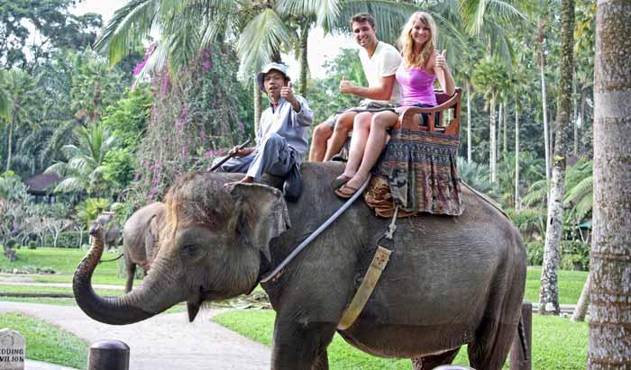 Wisata Naik Gajah Di Taro Ubud