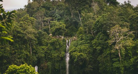 Air Terjun Sekumpul Singaraja Bali
