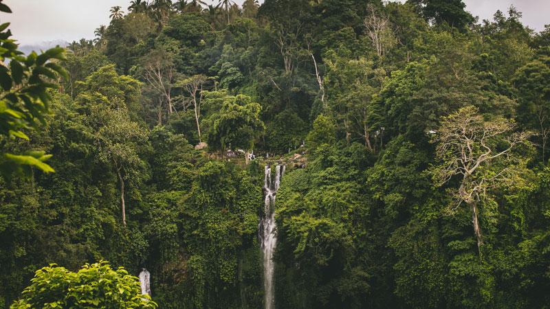 Air Terjun Sekumpul Singaraja Bali - Photo by Alexandra K