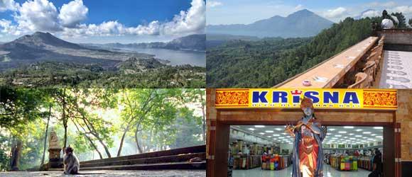 Paket Tour Ubud Kintamani Wisata Setengah Hari