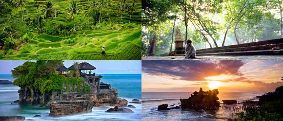 Ubud Tanah Lot Tour