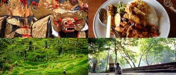 Paket Ubud Tour Setengah Hari
