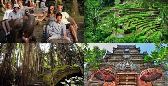 Paket Wisata Naik Gajah Ubud Tour Bali