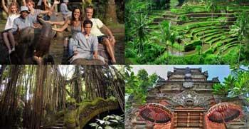 Paket Wisata Naik Gajah Ubud Tour