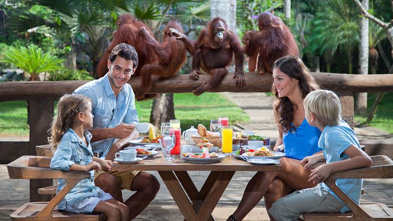 Bali Zoo Park Gianyar - Taman Bermain Anak Di Bali