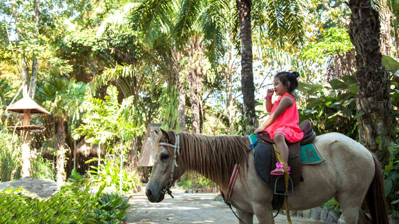 Menaiki Kuda Pony Wisata Permainan Anak Di Bali