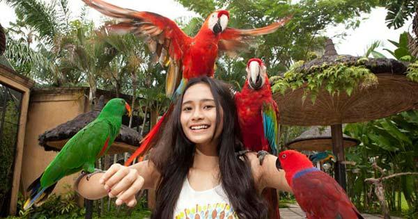 Bali Bird Park Ubud