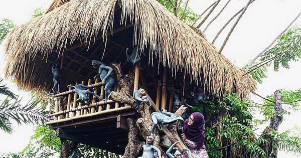 Rumah Pohon Big Garden Corner Bali