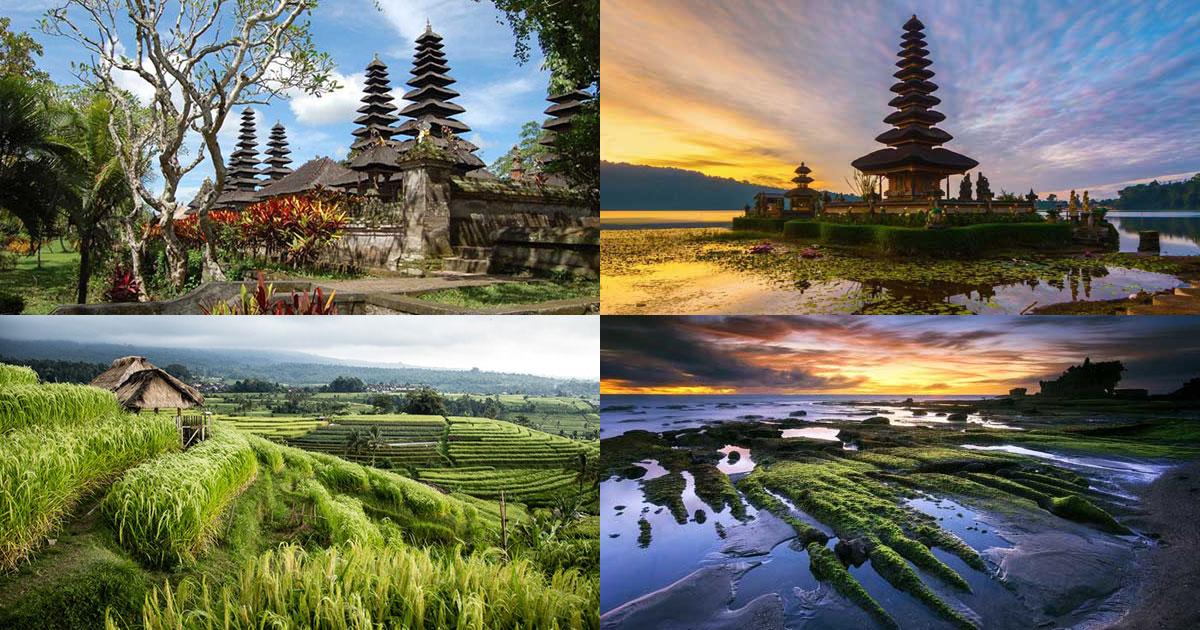 Paket Tour 1 Hari Di Bali