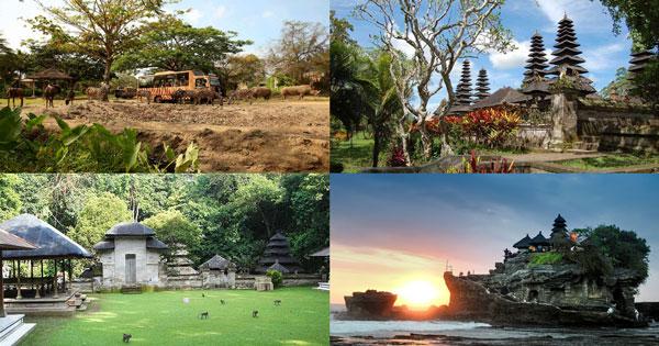Paket Bali Safari Marine Park Tanah Lot Tour
