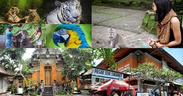 Paket Wisata Bali Zoo Ubud Tour