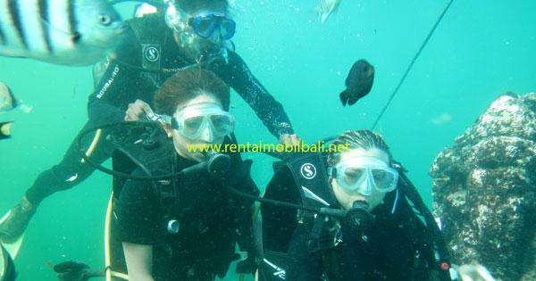 Aktivitas Menyelam Di Tanjung Benoa Cocok Untuk Pemula