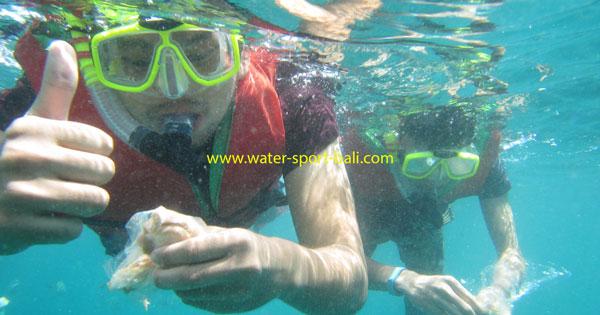 Tanjung Benoa Snorkeling