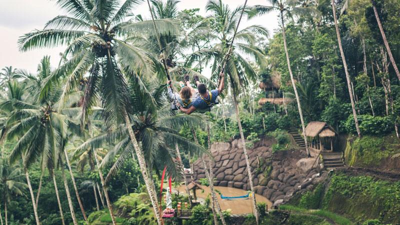 Bali Swing Aktivitas Liburan Pariwisata Ubud