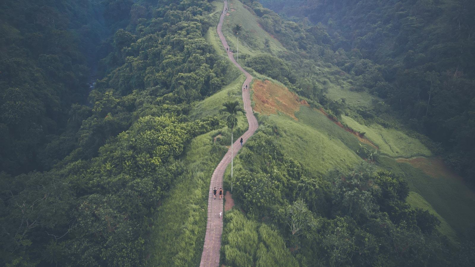 Bukit Campuhan Ubud Gianyar