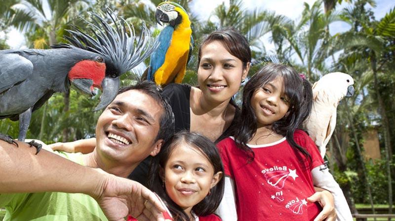 Liburan Keluarga Ke Taman Burung Gianyar Bali