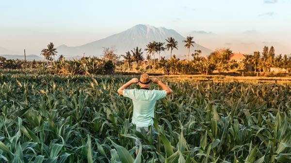 Cuaca Di Bali Pada Bulan Oktober