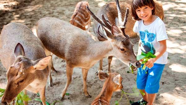Tempat Wisata Di Bali Untuk Anak
